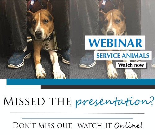 Did you miss the Service Animal Webinar? Watch it online today by clicking here!